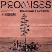 CALVIN HARRIS FEAT. SAM SMITH - PROMISES